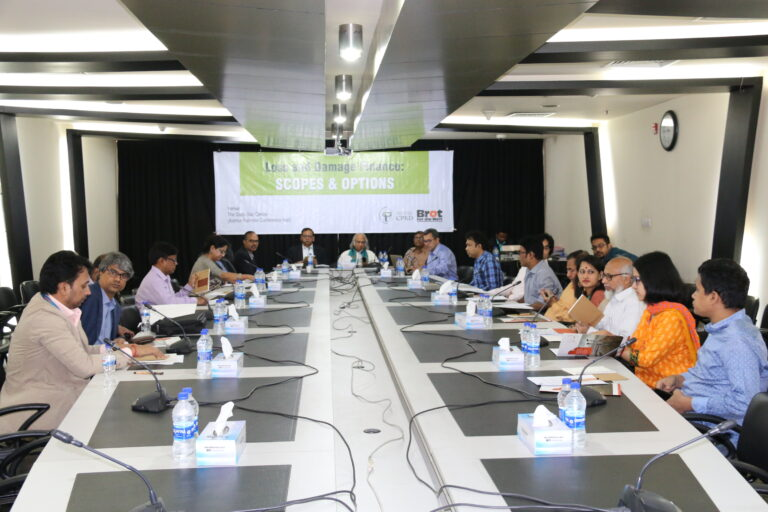 """Round table discussion on """"Loss and Damage Finance: Scopes and Options"""""""