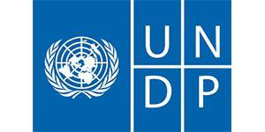 UNDP : Brand Short Description Type Here.